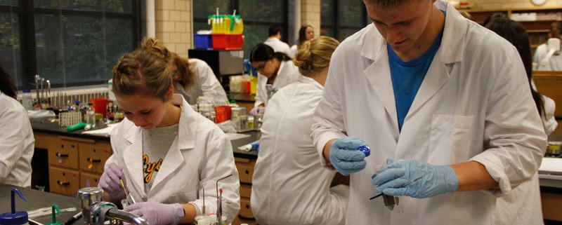 Group of people working in a lab