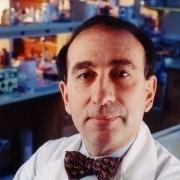 Dr. Levy Stuart